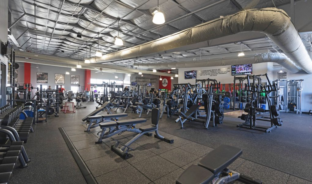 Prime 10 Websites To Search for Gym Equipment Olx